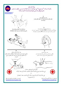 Arabic low literacy information for safe birth with misoprostol