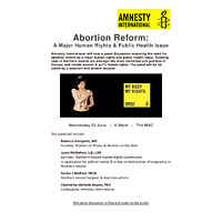 Amnesty panel wednesday